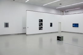 05scheffknecht